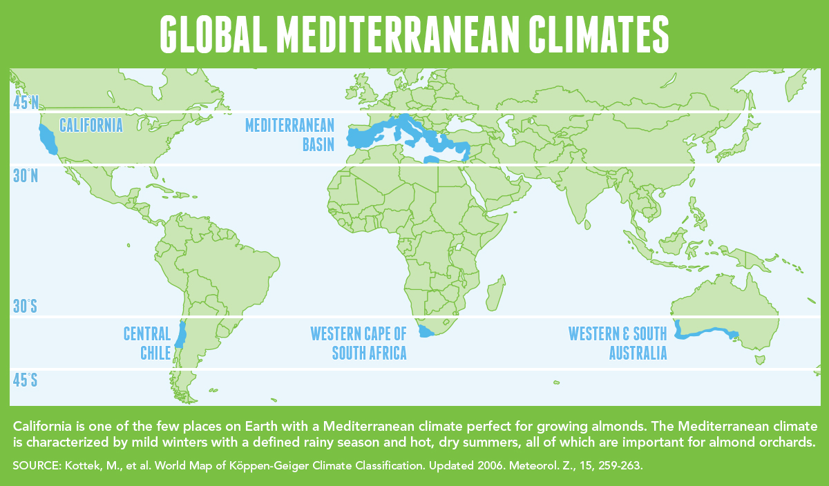 global Mediterranean climates graphic